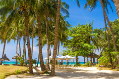 Beach with palm trees and beach beds, summer vacations. Tropical beach with palm trees and beach beds, summer vacations Stock Photography