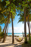 Beach with palm trees and beach beds, summer vacations. Tropical beach with palm trees and beach beds, summer vacations Stock Image