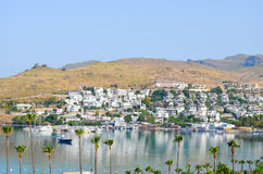 Beach with palm trees in Bodrum Stock Images
