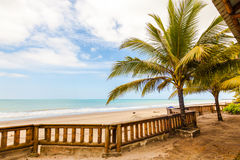Beach with palm trees. And calm sea in warm day Royalty Free Stock Images