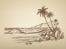 Beach with palm trees illustration. Vector summer beach with palm trees illustration Stock Image