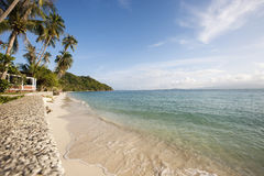 Beach and palm trees on Koh Pha Ngan, Thailand Stock Photos