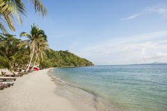 Beach and palm trees on Koh Pha Ngan, Thailand Royalty Free Stock Photo