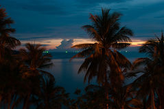 Beach with palm trees of luxury hotel. Pattaya, Thailand Royalty Free Stock Photo