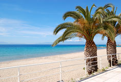 The beach with palm trees and mountain Olympus Stock Photo