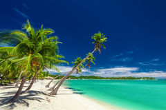 Beach with palm trees over the lagoon on Fiji Islands Royalty Free Stock Images