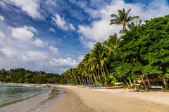 Beach with Palm Trees- Palawan, Philippines Stock Photography