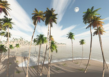 Beach with palm trees and the sea Stock Photo