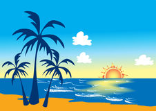 Beach with palm trees and sunset Royalty Free Stock Photo