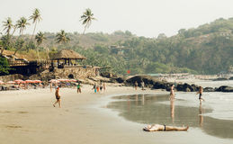Beach with palm trees, tourist relaxing in waters of ocean and restaurants on seaside. GOA, INDIA - MARCH 2: Beach with palm trees, tourist relaxing in waters of Royalty Free Stock Photography