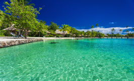 Beach with palm trees at a tropical resort on Moorea island. French Polynesia Stock Photo