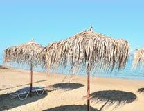 Beach umbrellas. Palm beach umbrellas at the beach Royalty Free Stock Photo