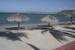 Beach palm umbrellas on La Paz seafront Royalty Free Stock Images