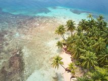 Beach with palms aerial view Royalty Free Stock Image