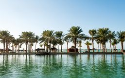 Beach with palms in Dubai Stock Image