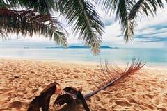 Beach with palms Stock Image