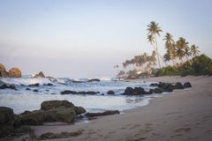 Beach with palms and fishing boats in Sri-Lanka Stock Images