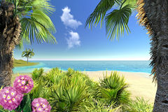 Beach, palms and flowers Royalty Free Stock Image