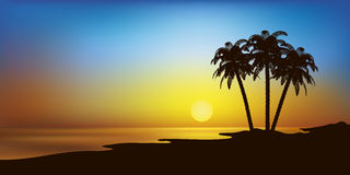Beach with palms and sunset vector landscape Stock Photos
