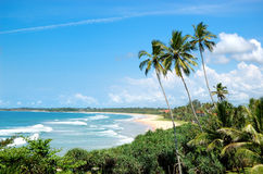 Beach, palms and turquoise water of Indian Ocean Stock Images