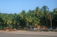Beach in Palolem. India. Royalty Free Stock Images