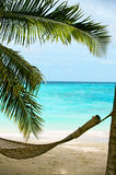 Beach paradise Royalty Free Stock Images