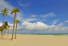 Beach in paradise Royalty Free Stock Photo