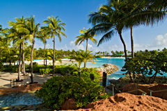 Beach at Paradise Island, Bahamas Stock Photography