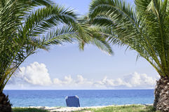 Beach paradise palm trees. Beach chairs on a perfect tropical island Royalty Free Stock Images