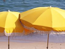 Beach parasols. A detail of some yellow parasols on the beach Stock Images