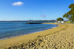 Beach and Park at Devonport Auckland New Zealand. Good Picnic Place close to the Wharf Stock Photography