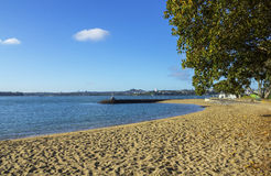 Beach and Park at Devonport Auckland New Zealand. Good Picnic Place close to the Wharf Royalty Free Stock Photography