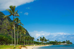 Beach Park seaside view with palm trees. Kualoa Beach Park seaside view with palm trees, Hawaii, Oahu Stock Photos