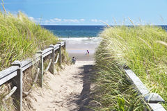 Beach Path Stock Photography