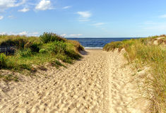 Free Beach Path Royalty Free Stock Photography - 59832797