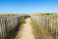 Beach Path Stock Images