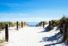 Beach path with wooden fence Stock Photos