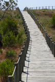 Beach pathway. Wood pathway to the beach Stock Photo