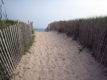 Beach pathway royalty free stock photo