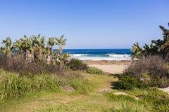 Beach Pathway Ocean Stock Image