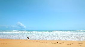 Beach. Peaceful tropical beach in the morning stock video footage