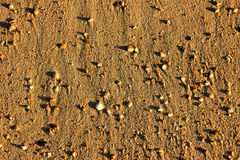 Beach Pebble  Background Royalty Free Stock Photo