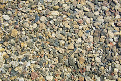 Beach Pebbles Royalty Free Stock Photography