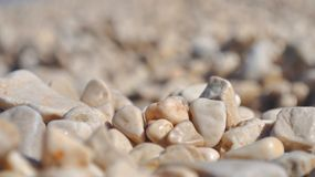 Background of small brown beach pebbles Stock Photo