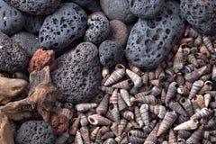 Beach pebbles Stock Image