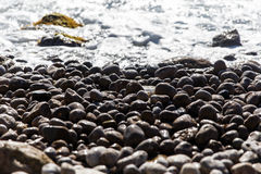 Beach pebbles on seacoast in afternoon Royalty Free Stock Images