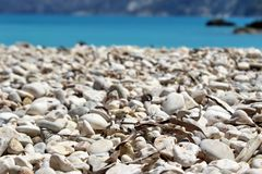 Beach pebbles from strange perspective royalty free stock photo