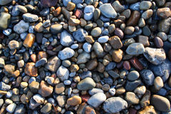 Beach pebbles in sunlight. Beach pebbles in evening sunlight royalty free stock photo
