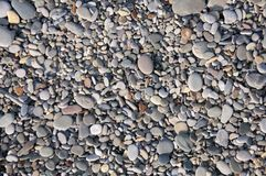 Beach pebbles Texture Stock Photography