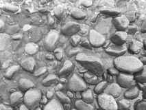Beach pebbles in the water. Black and white seaside photo background with sea stones Royalty Free Stock Image